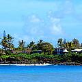Waimea Bay by Brad Scott