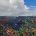 Waimea Canyon by Lynn Bauer