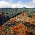 Waimea Canyons by Debbie Karnes