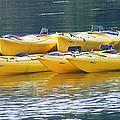Waiting Kayaks by Carol Bruno