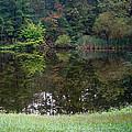 Walden Pond 1 by Douglas Barnett