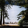 Walden Pond by John Small