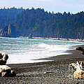 Walk On La Push Beach by Carol Groenen