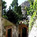 Walking Along The Amalfi Coast  5 by Tanya  Searcy
