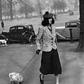 Walking The Dog by H F Davis