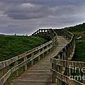 Walkway On Phillip Island by Blair Stuart