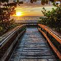walkway to Paradise by Nick  Shirghio