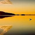 Wallis Lake 5521 by Karl Bayer
