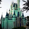 Walt Disney Castle by Lisha Segur