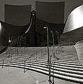 Walt Disney Concert Hall by Aurica Voss