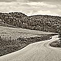 Wandering In West Virginia Sepia by Steve Harrington