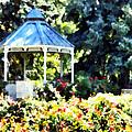 War Memorial Rose Garden 2  by Angelina Vick