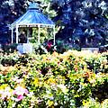 War Memorial Rose Garden  3 by Angelina Vick