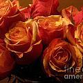 Warm Roses by Robert D McBain
