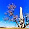 Washington Monument In Washington Dc by Chira Juti