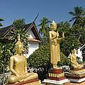 Wat Mai Buddhas by Gloria & Richard Maschmeyer