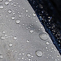 Water Droplets by Ester  Rogers