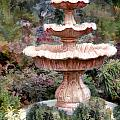 Water Fountain In  The Forest by Elaine Plesser