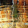 Water Glass by Eyefool Photos Brett Klersfeld