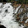 Water In Motion Glen Alpine Falls by LeeAnn McLaneGoetz McLaneGoetzStudioLLCcom