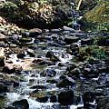 Water Over Rocks by Maureen E Ritter