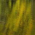 Water Reflection Abstract Autumn 1 A by John Brueske
