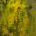Water Reflection Abstract Autumn 1 D by John Brueske