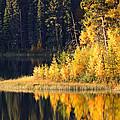 Water Reflection At Jade Lake In Northern Saskatchewan by Mark Duffy