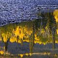 Water Reflections With A Rocky Shoreline by Carson Ganci