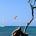 Water Sports In Hawaii 2 by Karen Nicholson