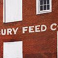 Waterbury Feed by Craig Morris