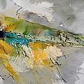 Watercolor 213001 by Pol Ledent