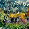 Watercolor 216050 by Pol Ledent