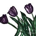 Watercolor Purple Tulips by Marsha Heiken