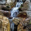 Waterfall 2 by Burney Lieberman
