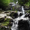 Waterfall  by Dennis  Richardson