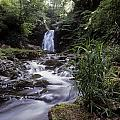 Waterfall In A Forest, Glenoe by The Irish Image Collection