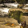 Waterfall In Fall by Steve Purnell