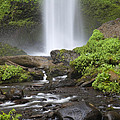 Waterfall In Gorge - Columbia River Gorge by John Gregg