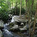 Waterfall In Stream by Megan Cohen