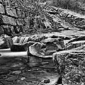 Waterfall Mono by Steve Purnell