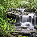 Waterfall Near Mabbitt Spring by Tom and Pat Cory