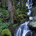 Waterfall Pouring Down Mountainside by Natural Selection Robert Cable