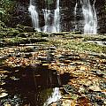 Waterfalls, During The Autumn, Glenoe by The Irish Image Collection