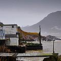 Waters Edge St Johns by Geoff Evans