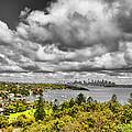 Watson Bay Sydney Harbor by Douglas Barnard