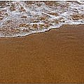 Waves Triptych by Michelle Calkins