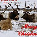 We All Got Together Christmas by DeeLon Merritt