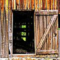Weathered Barn Door by Marty Koch
