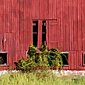 Weathered Red Barn Of New Jersey by David Letts